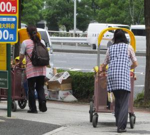 新横浜駅周辺での保育園児の散歩風景