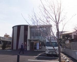 新しい港北区医師会館・休日急患診療所の敷地内にはソメイヨシノが植樹された。式典の開催を祝うかのように花開いて当日を迎えた(2017年3月25日)