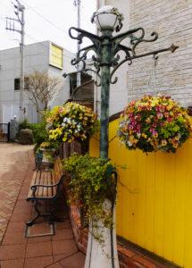 パン工房シャンドブレ前のガレージ・スペースには5月に咲くバラの花も植えられている