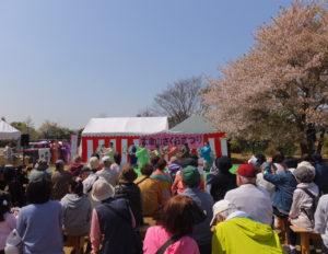 桜の花は散り始めていたものの、好天にも恵まれ、多くの人々が集まり、ステージや各テント、フリマや体験コーナーなどもにぎわっていました(11時20分頃撮影)