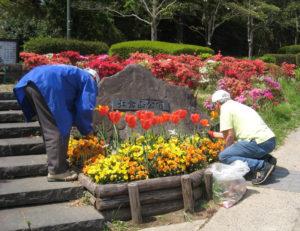 大倉山公園花壇(大倉山2)も今回初参加となる。公園愛護会のメンバーが花壇の手入れを行っている(2019年4月18日、公益財団法人大倉精神文化研究所提供)