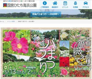 国営ひたち海浜公園(リンクは同公園のサイト)では、来月(6月)2日まで「茨城バラまつり」が開催されている