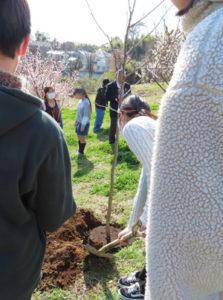 ハクモクレンの木、そして花のような「強さ」を持って育ってほしいと三枝校長