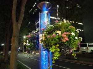 F・マリノス通りに復活した「ハンギングバスケット」は、16本のポール(グリーンポール)と新横浜駅前公園入口付近のスタンディング花壇に計37個、10月5日までの期間限定で設置されている(9月4日20時ころ)