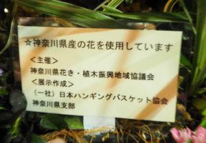 ハンギングバスケットには「神奈川県産の花を使用しています」と、県産花きのPRと消費拡大を図ることを目的としていることを説明した札が付けられている