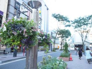 「雨上がりの朝のハンギングバスケットをぜひ見に来てもらえたら」と新横浜町内会・美化環境部長の野村さんはその鑑賞のポイントを語る(9月4日16時30分ころ)