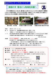 5月11日(火)午前に開かれるウォーキングツアー「新緑の中 菊名から馬場花木園へ」の案内チラシ(港北ボランティアガイドの会提供)