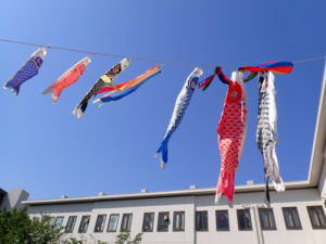 青空に向けて泳ぐ「こいのぼり」は、菊名地区センターやこうほく区民施設協会の職員が持ち寄り設置した(4月20日、同協会提供)