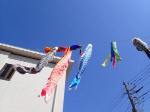 時々からまってしまう様も「人の人生」のようにも目に映る。「特に小さい緋鯉(ひごい)、子どもたちは、風にも負けじと元気に泳いでいます」と平本さん(4月20日、同協会提供)