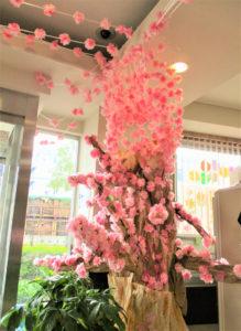 「桜サクプロジェクト(PROJECT)」in新羽の様子(新羽地域ケアプラザ・コミュニティハウス提供)