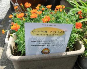 新羽地区民生委員・児童委員協議会(米山健二会長)でもオレンジ色のマリーゴールドの花を200株用意、町内40カ所に配布し活動を盛り上げる